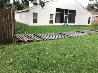 Back fence